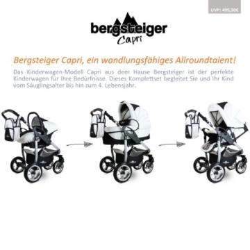 Bergsteiger Kombikinderwagen